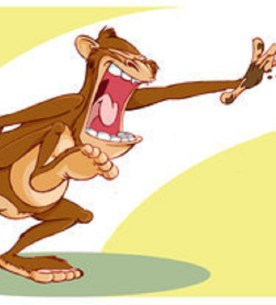 Liberal Monkey poop