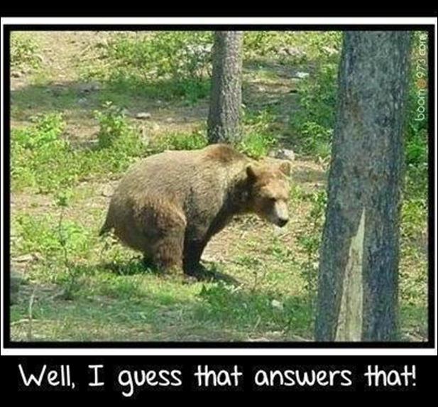 do-bears