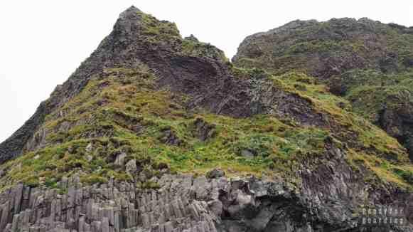 Puffiny w okolicy Vik - Islandia