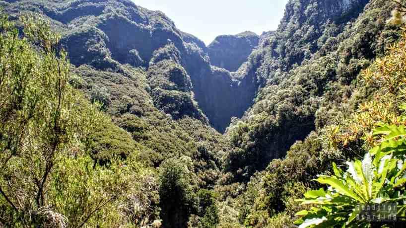 Droga do wodospadu - Madera