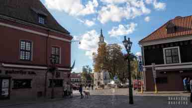 Stary Rynek, Kowno