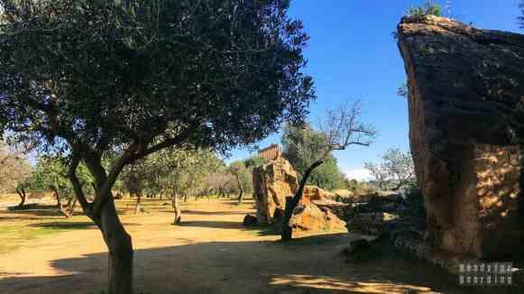 Valle dei Templi, Agrigento - Sycylia