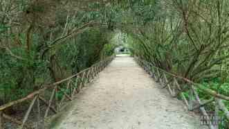 Park archeologiczny w Syrakuzy, Sycylia