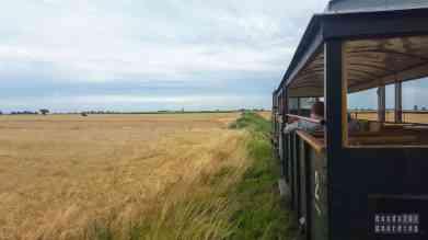Przejazd koleją wąskotorową Rogów - Jeżów, łódzkie