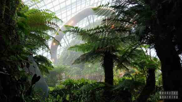 Cloud Forest, Gardens by the Bay - Singapur