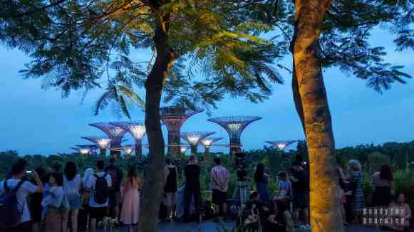 Supertree Grove, Gardens by the Bay - Singapur