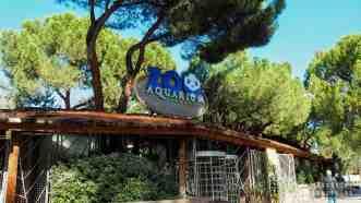 Zoo w Madrycie - Hiszpania