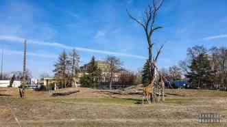 Ogród zoologiczny we Wrocławiu