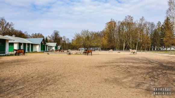 Stadnina Koni w Janowie Podlaskim