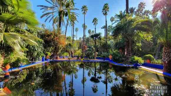 Jardin Majorelle, Marrakesz - Maroko