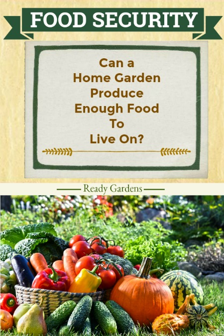 Growing your own produce is a frugal and more natural way to cut back on the grocery budget. But how much food can a home garden produce?