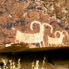 Dvorak's Raft-Kayak & Fish Expeditions  Est. 1969 Petroglyphs in the Canyons Green River