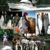 Classic Alaska Charters where Adventure Happens! Classic Alaska Charters fishing-cruising