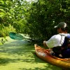 Shawnee Adventure Guides Kayaking in Southern Illinois