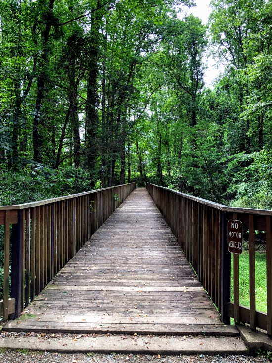 Bridge through a park in Charlottesville