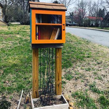 Little Free Belmont Library