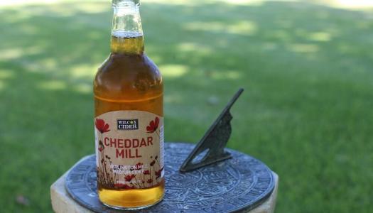 Wilcox Cheddar Mill Yarlington Mill Medium Cider
