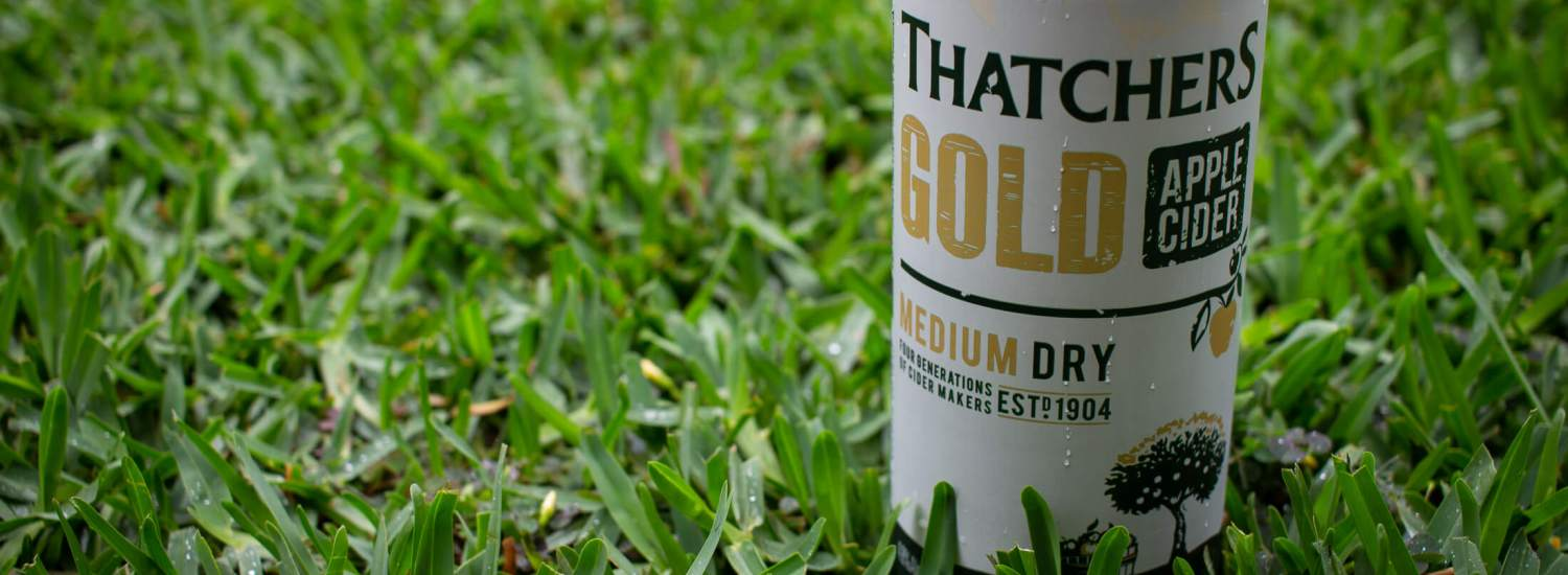 Can of Thatchers Gold Medium Dry Cider sitting in green grass