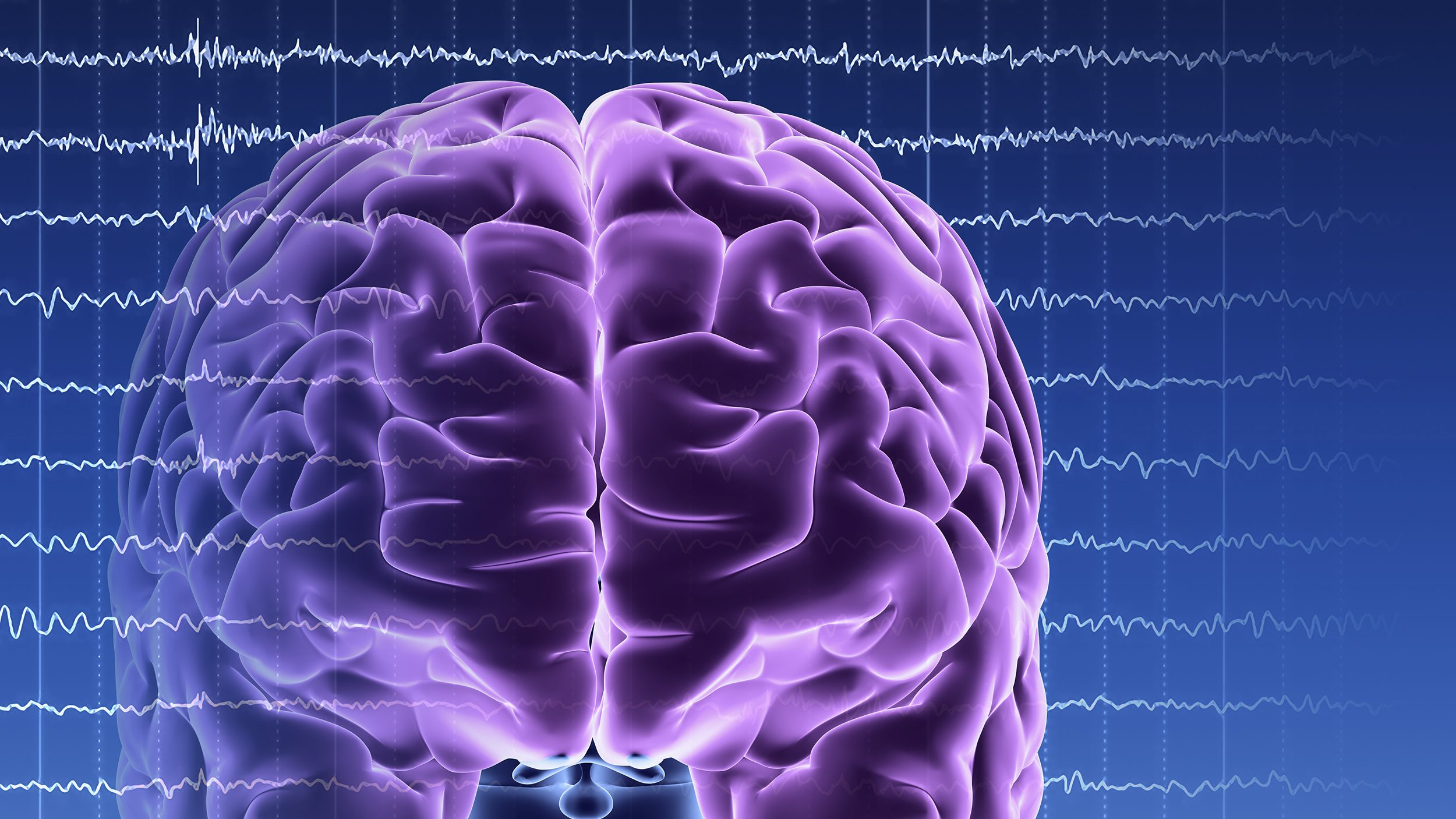New Findings Shows Brain Activity Lasting Ten Minutes