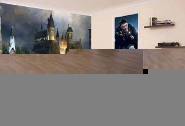 harry potter room