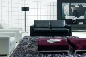 Black And White Contemporary Sofa Design
