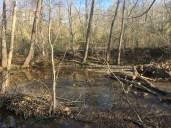 Lickinghole Creek