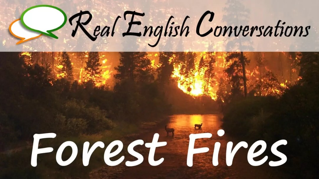 English Conversation about Forest Fires