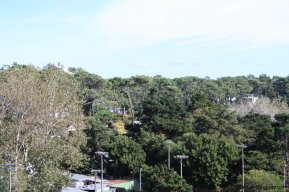 4510-Apartment-for-All-Year-Round-Enjoyment-in-Roosevelt-Area-1310