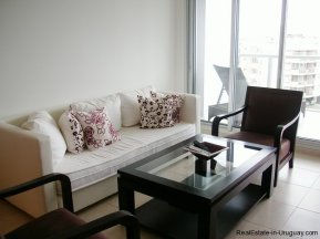 4593-Modern-Rental-Apartment-with-Views-to-Sea-and-Forest-at-Playa-Mansa-1121
