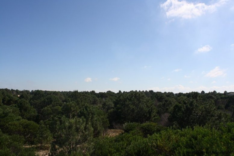 4880-Magnificent-elevated-Plot-overlooking-Jose-Ignacio-Lighthouse-and-Sea-1261