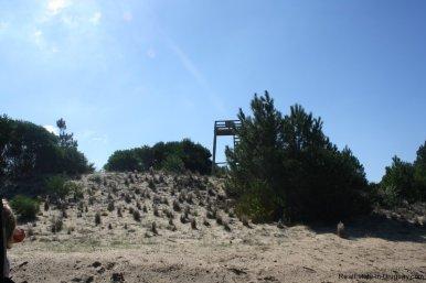 4880-Magnificent-elevated-Plot-overlooking-Jose-Ignacio-Lighthouse-and-Sea-1266