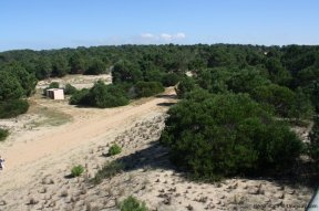 4880-Magnificent-elevated-Plot-overlooking-Jose-Ignacio-Lighthouse-and-Sea-1270
