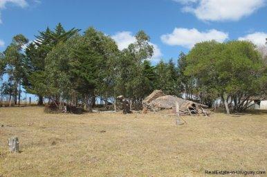 4797-Attractive-Ranch-Land-with-small-School-close-to-Jose-Ignacio-1746