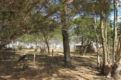 4797-Attractive-Ranch-Land-with-small-School-close-to-Jose-Ignacio-1748