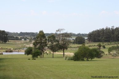 4850-Wonderful-Ranch-Land-just-2km-from-the-Sea-Punta-Piedras-1887