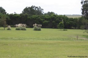4850-Wonderful-Ranch-Land-just-2km-from-the-Sea-Punta-Piedras-1892