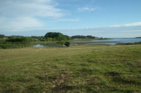 4881-Small-Ranch-and-Land-on-Laguna-del-Sauce-1741