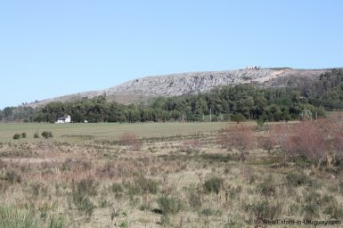 4113-Land-offering-many-Development-Possibilities-and-Mountain-Views-in-Las-Vertientes-2163