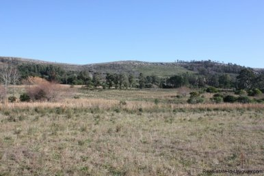 4113-Land-offering-many-Development-Possibilities-and-Mountain-Views-in-Las-Vertientes-2164