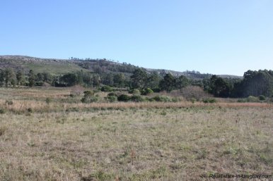 4113-Land-offering-many-Development-Possibilities-and-Mountain-Views-in-Las-Vertientes-2165