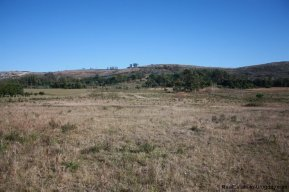 4113-Land-offering-many-Development-Possibilities-and-Mountain-Views-in-Las-Vertientes-2167