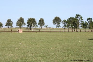 4482-Plots-in-Pueblomio-Development-with-Countryside-Views-and-La-Barra-Golf-Club-2234