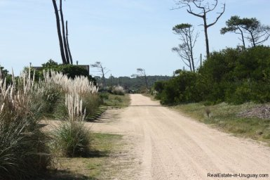 4515-Plot-just-Meters-from-Jose-Ignacio-Lagoon-by-La-Juanita-2149