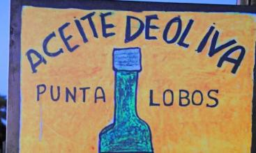 Punta Lobos Olive Oil Uruguay