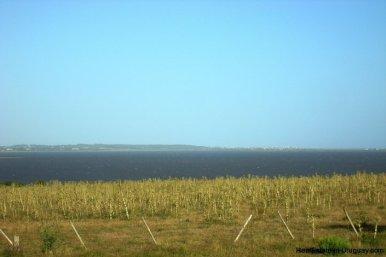 3990-Magnificent-Land-with-Lagoon-Views-close-to-Jose-Ignacio-2477