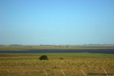3990-Magnificent-Land-with-Lagoon-Views-close-to-Jose-Ignacio-2478