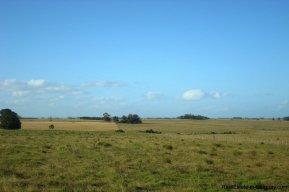 3990-Magnificent-Land-with-Lagoon-Views-close-to-Jose-Ignacio-2480