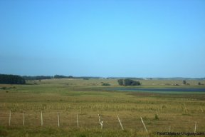 3990-Magnificent-Land-with-Lagoon-Views-close-to-Jose-Ignacio-2482