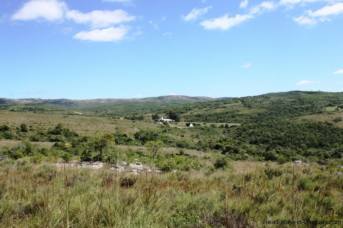 5151-La-Canas-Mountain-Land-with-Good-Quality-Soil-2680