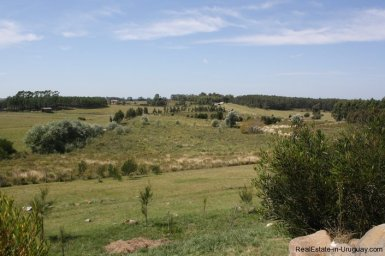 5156-The-Perfect-Land-to-Build-and-Close-to-La-Barra-2684